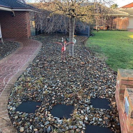 A front lawn with a tree, stones and pavers.