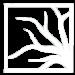 A white Ferguson Landscape & Design logo.